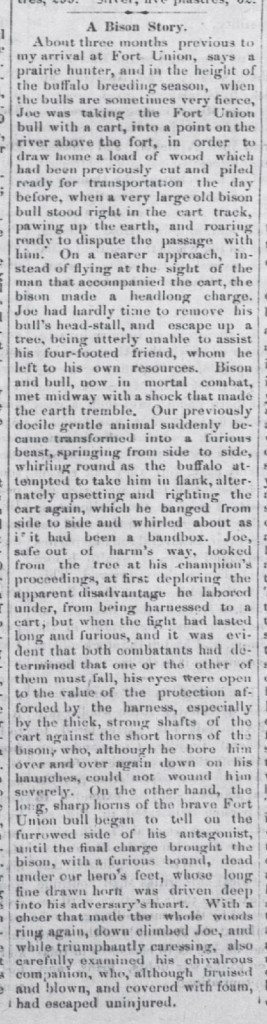 A Bison Story The Waterloo Express May 10 1877