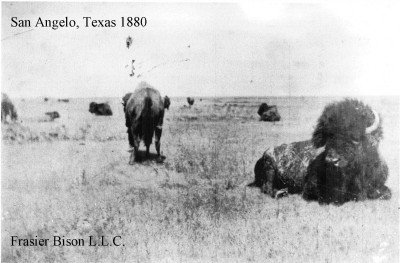 San Angelo 1880