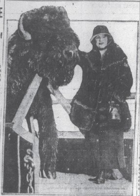1919 Bison History Chicago Daily Dec 28