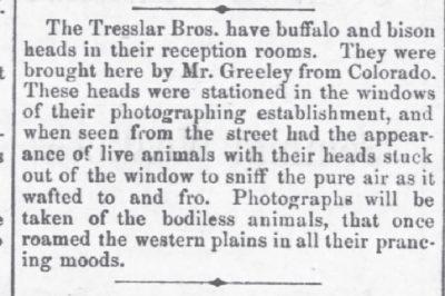 Fort Scott Daily KS May 25 1878 Buffalo Mounts