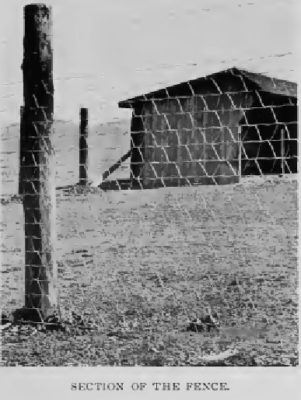 Section of the fence