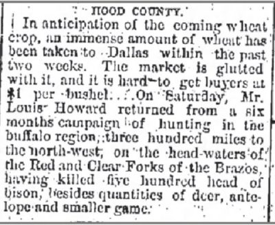 The Galveston Daily News May 6 1876