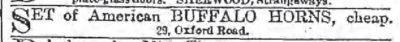 1881 American Buffalo Horns Ad