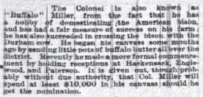 The NY Times Aug 26 1878 Buffalo Butter