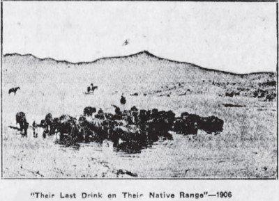 Their Last Drink The Winnipeg Tirb Dec 25 1929 pic