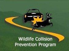 Wildlife Collision Prevention Program