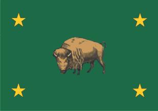 1916 US Flag