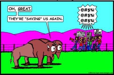 Great Saving Us Again