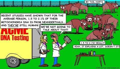 Bison DNA