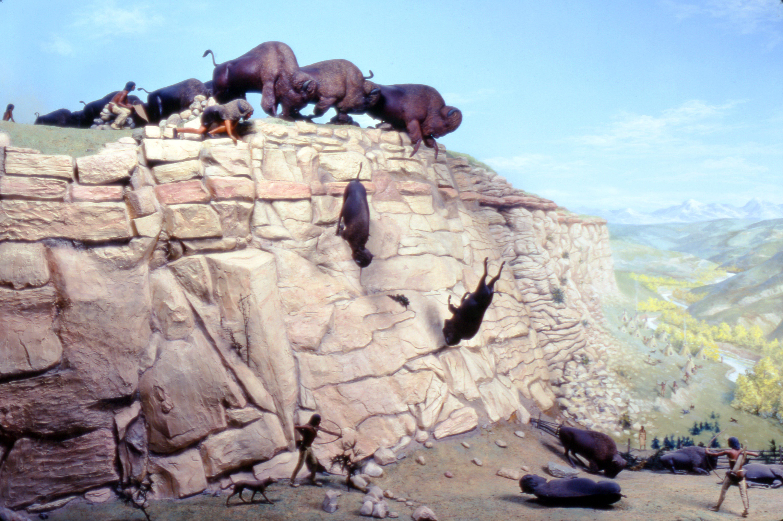Buffalo Jumps All About Bison Custom Paint Job 2002 Daged Akota Jump 8816886