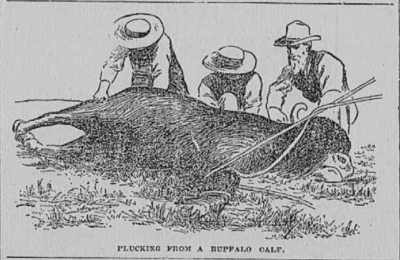 The Abbyville Banner May 24 1893 pic 2