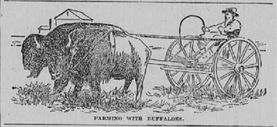 The Abbyville Banner May 24 1893 pic 3