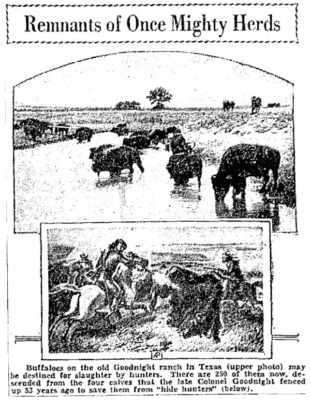 The Salt Lake City Tribune Oct 4 1931