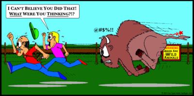 Tickle Bison