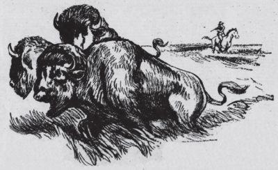 1925 Winnipeg Buffalo Hunt Drawing
