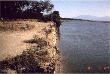 Reinterpreting the 1882 Bison Population Collapse-Figure-3