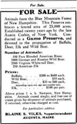 Corbin Animals Foe Sale