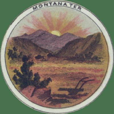 Montana Territory Seal 1865